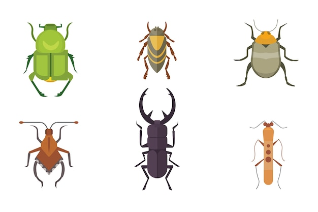 Set of insects     icons. collection nature beetle and zoology cartoon illustration. bug icon wildlife concept