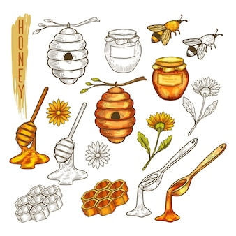Set of isolated apiary items or apiculture, beehouse accessory. sketch of bee or was, honeycomb and honey, spoon and dipper, flower and jar, dipper and beehive, stick and beeswax, comb.