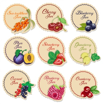 Set of isolated labels for jam from berries