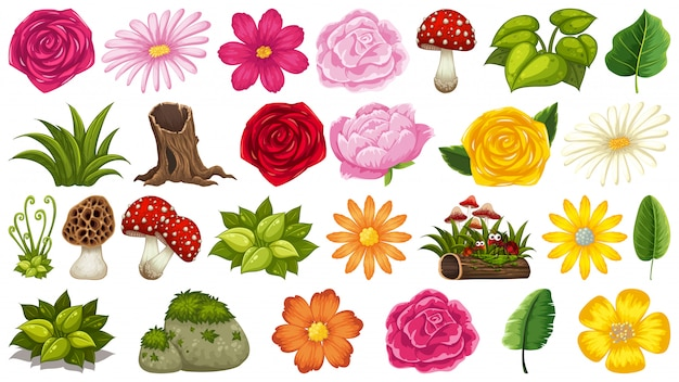 Set of isolated objects theme with mushrooms and flowers