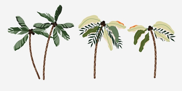 Set of isolated palm trees.