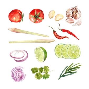 Set of isolated watercolor coriander, lemon grass, chili, onion illustration for decorative use.
