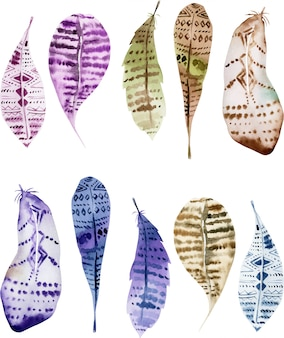 Set of isolated watercolor owl feathers