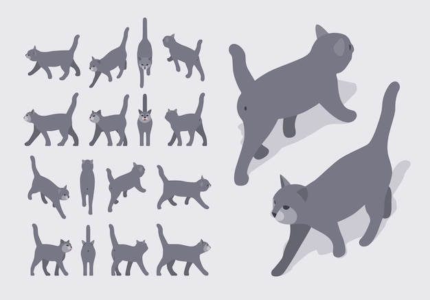 Set of the isometric grey walking cats