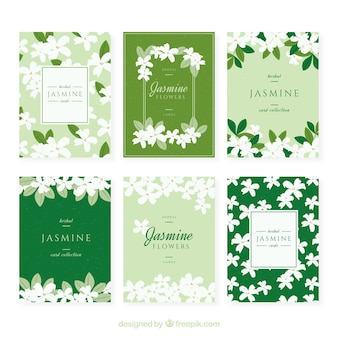 Set of jasmine cards with beautiful flowers