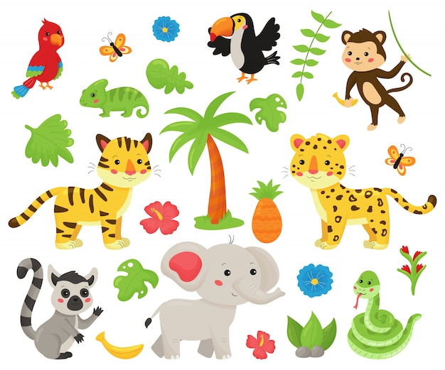 Set of jungle animals and tropical plants.