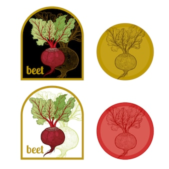 Set of labels with a picture of beet.