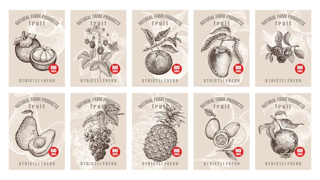 Set of labels with with various fruits and berries with inscriptions
