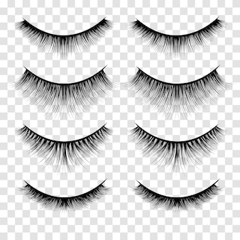 Set of lashes illustration