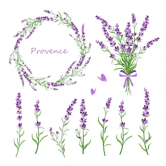 Set of lavender flowers, bouquet, wreath and elements of design for greeting card on white background in retro flat style, provence concept.