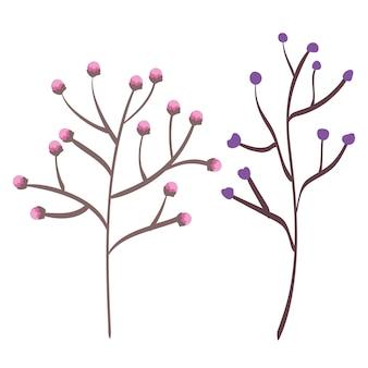 セットは植物のアイコンをリーフします