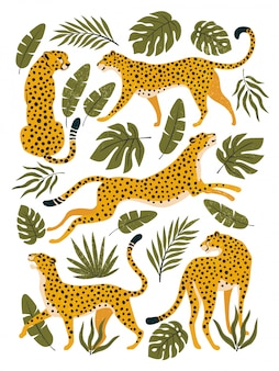 Set of leopards or cheetahs and tropical leaves. trendy illustration.
