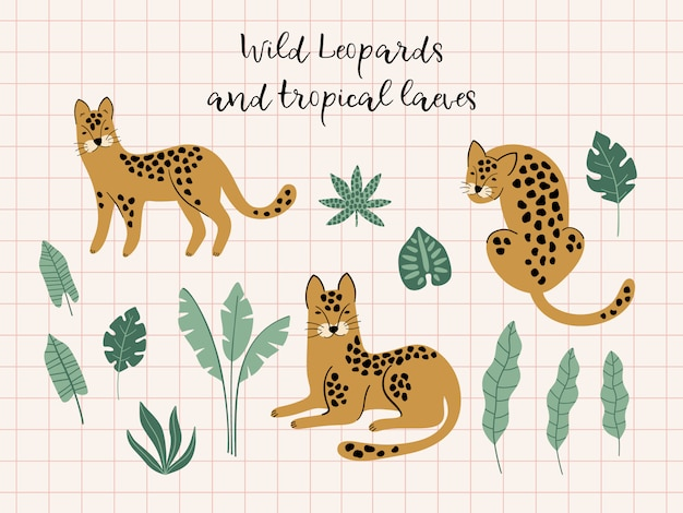 Set of leopards and tropical leaves.