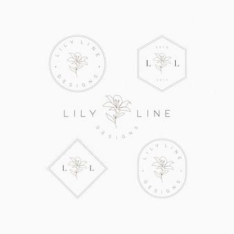 Установить вектор логотипа цветка лилии премиум