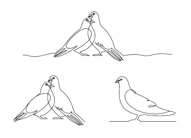Set of line art pigeon, bird couple.