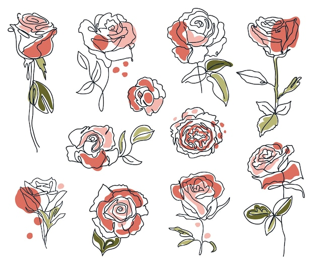 Set of linear roses and leaves minimal outline silhouette decorative elegant