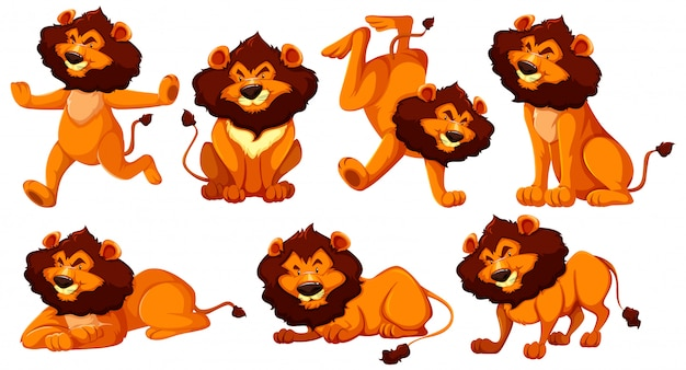 Set of lion cartoon character
