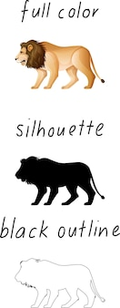 Set of lion in color, silhouette and black outline on white background