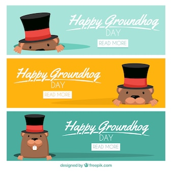 Set of lovely groundhog banners with hat