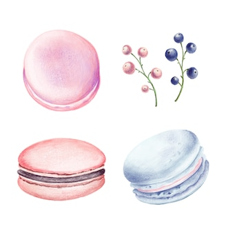 Set of macaroons and berries