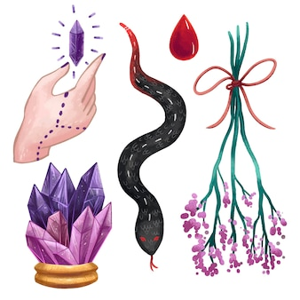 A set of magical illustrations in procreate witch objects, a large crystal, a magic crystal in hand, a drop of blood, a snake, a twig with purple flowers