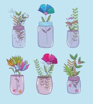 Set of mason jar,