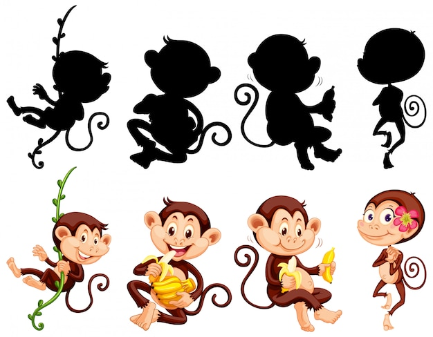 Set of monkey character and its silhouette