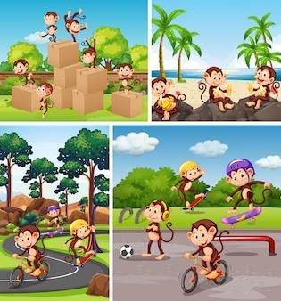 Set di scimmia in sfondo diverso