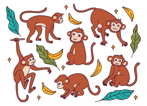 Set of monkey in different poses doodle