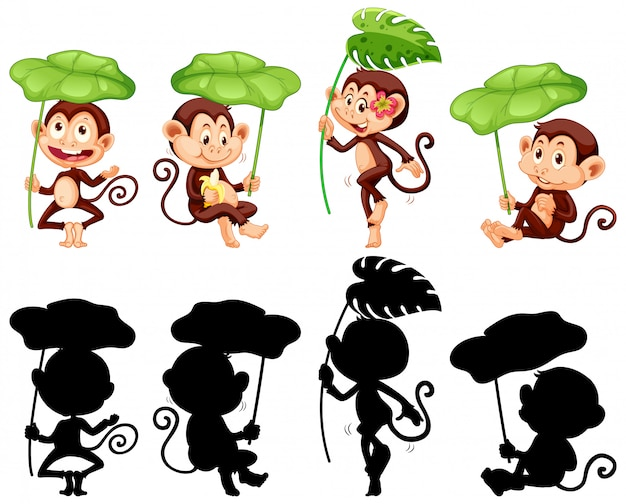 Set of monkey holding leaf and its silhouette