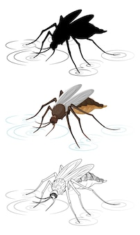 Set of mosquito in silhouette and colour and doodle