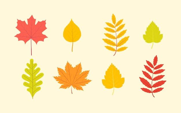色とりどりの葉をセットします。ベクトルイラスト。