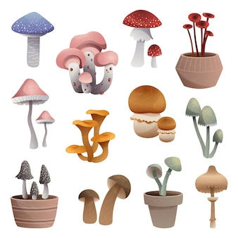 Set of mushrooms of different types isolated on white background