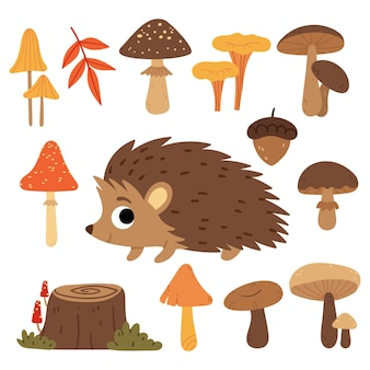 Set of mushrooms and hedgehogforest plants and animals