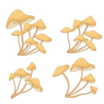 Set of mushrooms toadstools. forest plants