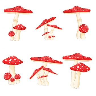 Set of mushrooms toadstools