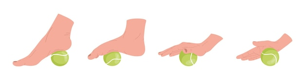 Set of myofascial release exercises for hands and  feet