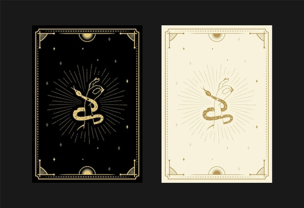 Set of mystical tarot cards alchemical doodle symbols engraving of stars skull snakes and crystals