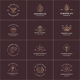 Set of natural logo template, natural extract