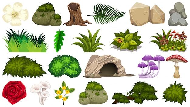 Set of nature elements