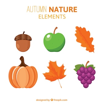 Set of nature elements
