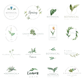 Set of nature and plant logo