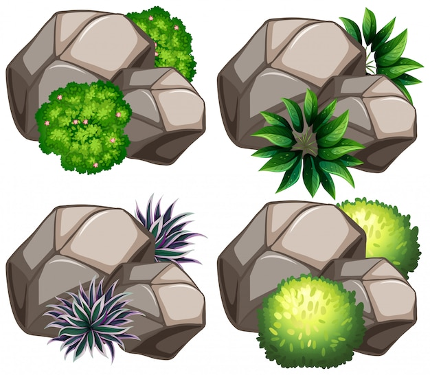 Set of nature rock