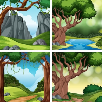 Set di scene della natura