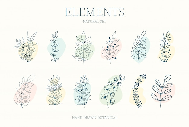 Set of nerd elements with circles of different colors on an isolated background. tropical plants, leaves and branches with flowers. hand drawn style. for printing on fabric and clothing,