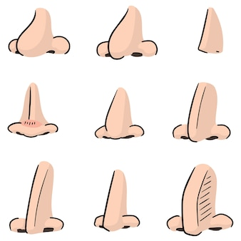 Set of nose