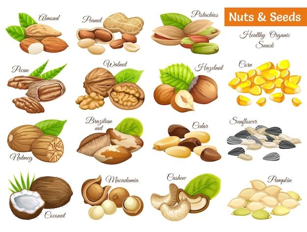 Установите орехи и семена