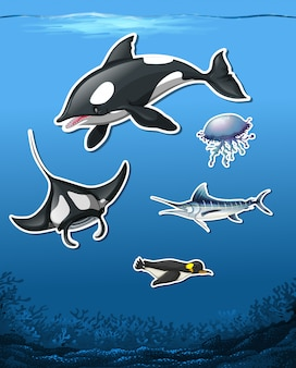 Set of ocean animal stickers on sea background