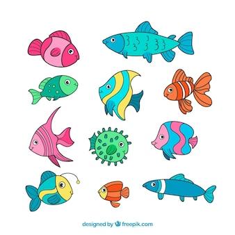 Набор из 11 рыб