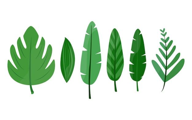 열대 잎 6개 세트입니다. 만화 스타일입니다. 여름, 휴가 프로젝트, 인쇄물, 광고를 위한 디자인 요소입니다. 벡터 일러스트 레이 션, 평면입니다.